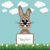 brown bunny hold board spring grass flowers