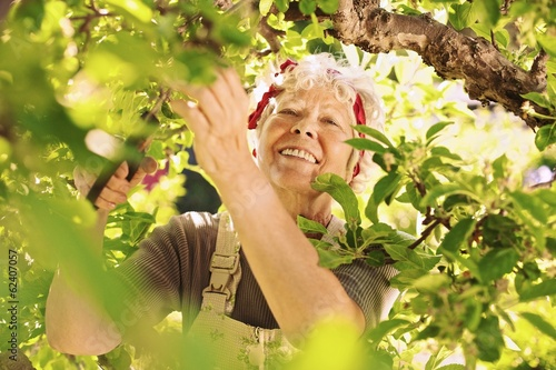 Senior female gardener working in her farm smiling