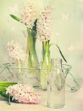 Hyacinth Arrangement