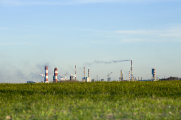 Plant of the chemical industry and nature green field