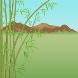 Bamboo and mountains
