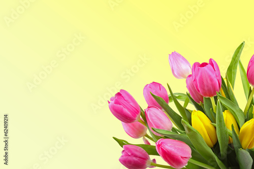 bouquet of tulips on yellow background with copy space