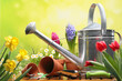 canvas print picture - Gardening tools and flowers