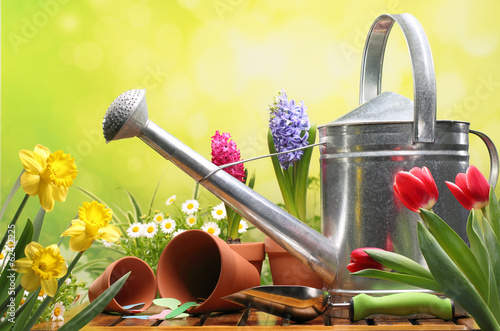 canvas print picture Gardening tools and flowers