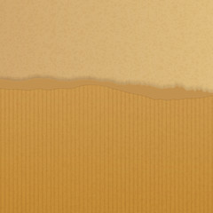 torn brown paper background