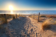 Leinwandbild Motiv path to sand beach in North sea