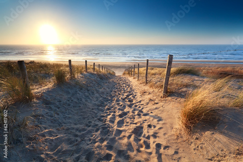 Plexiglas Kust path to sand beach in North sea