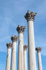 Former United States Capitol building columns