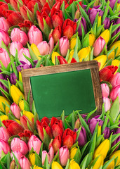 fresh spring flowers. tulips and blackboard