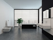 Luxury modern black and white bathroom interior