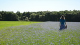 Girl walk through blue cornflower agricultural field in summer