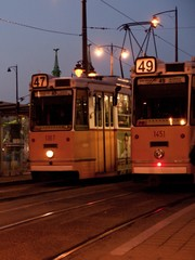 two yellow trams at nightfall