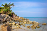 Gulf of Thailand coast with tree