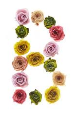 Rose font B