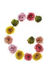Rose font G