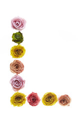 Rose font L