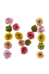 Rose font M