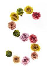 Rose font S