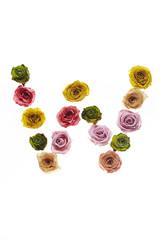 Rose font W