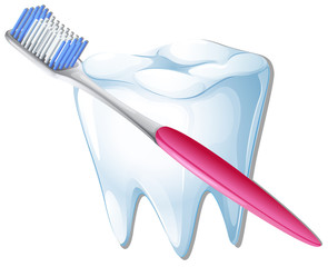A toothbrush and a tooth