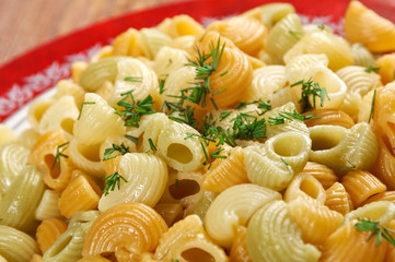 Colorful Italian conchiglie  pasta