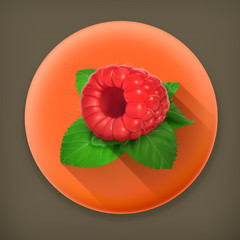 Raspberries and mint long shadow vector icon