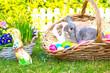 2 Hasen sitzen im Osterkorb
