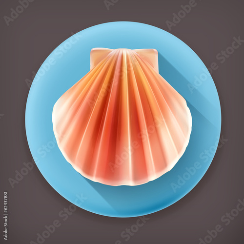 Seashell long shadow vector icon