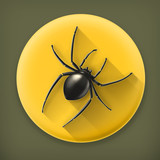 Spider, long shadow vector icon