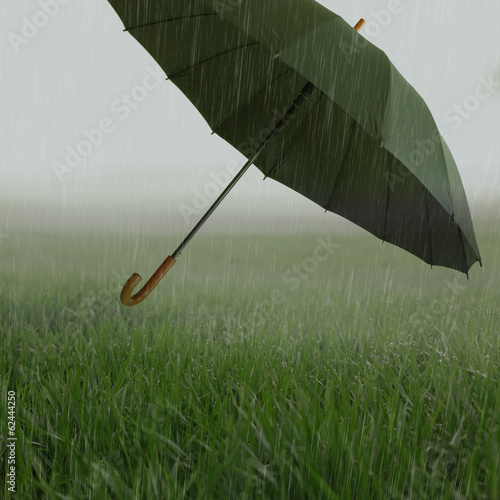 Foggy grassy field with heavy rain and flying umbrella
