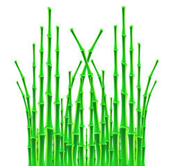 bamboo sticks over white background