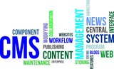word cloud - cms