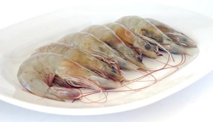 Fresh raw shrimp