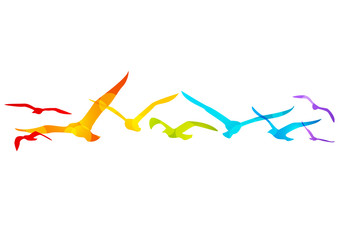 Rainbow birds border for Your design