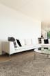 interiors of a modern house, living room, white divan