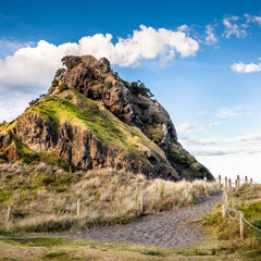 Lion Rock  (Piha Beach, New Zealand)