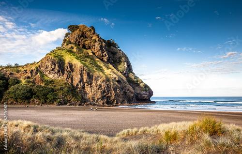 Keuken foto achterwand Nieuw Zeeland Lion Rock (Piha Beach, New Zealand)