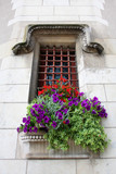 window with flowers in a castle in France