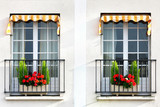 window with flowers in pots in paris
