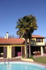 villa provençale avec piscine et palmiers