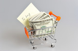 Dollars with shopping list in pushcart on gray