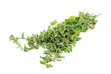 Bunch of Marjoram Herb Isolated on White Background