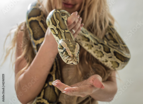 Boa on hands - 62461019
