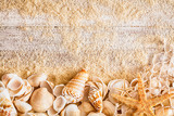 Nautical background and border of seashells