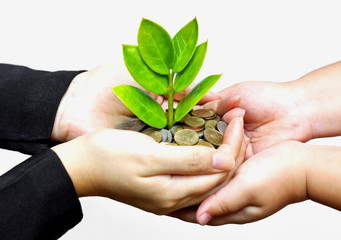 hands giving a tree growing on coins to child's hands / csr