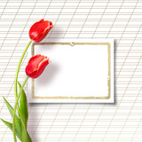 Bouquet of beautiful red tulips with greeting on paper white bac