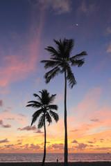 Beautiful Coast Sunrise
