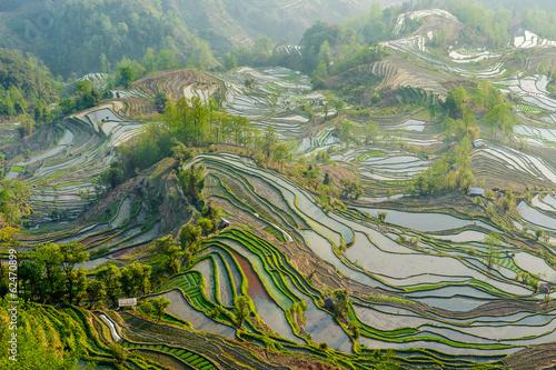 Yuan Yang Rice Terraces