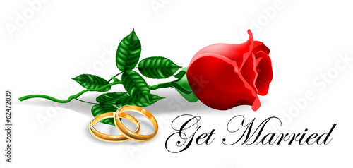 Wedding Rings and Rose Vector