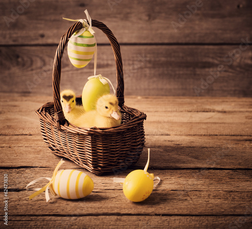 goslings with easter eggs on wooden background